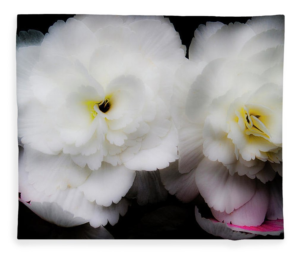 Flowers Fleece Blanket featuring the photograph Pink and Yellow on White 3 by Lee Santa