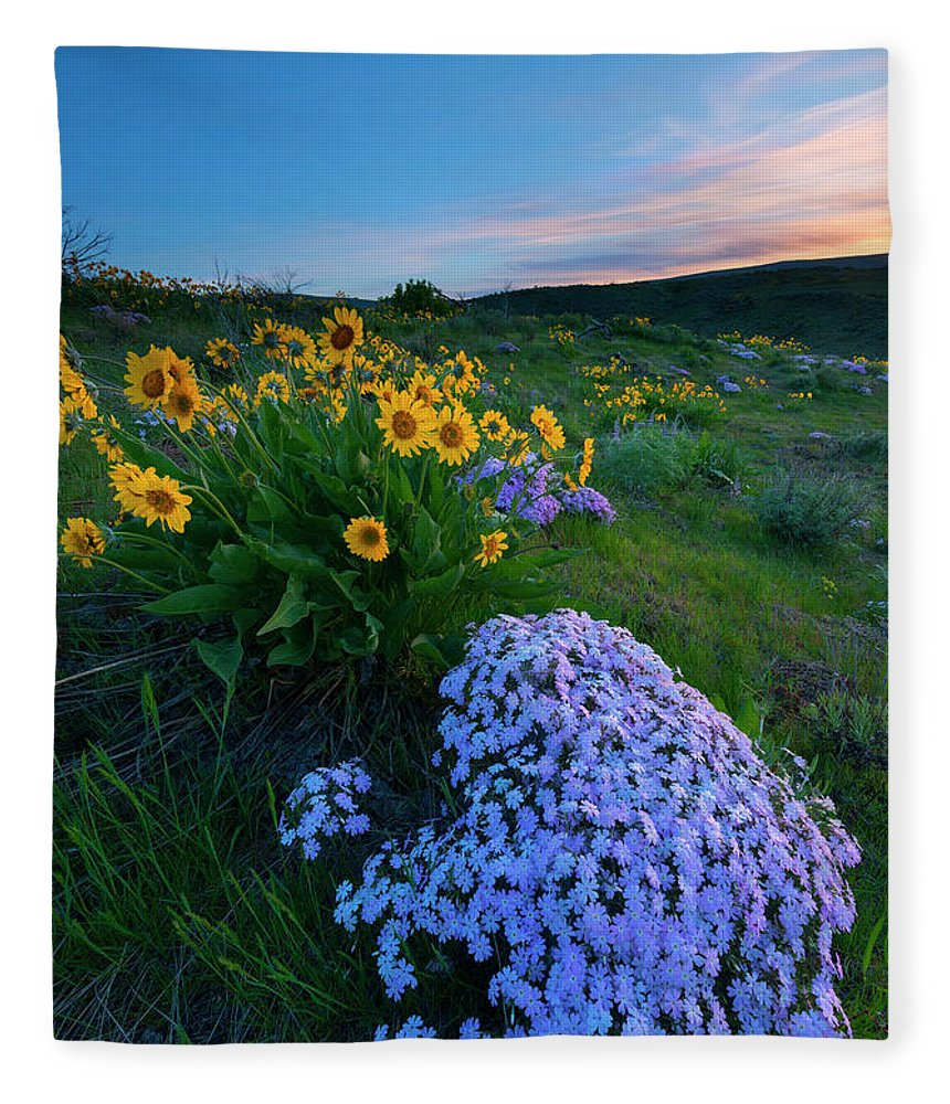 Phlox Fleece Blanket featuring the photograph Pink And Yellow Sunset by Mike Dawson