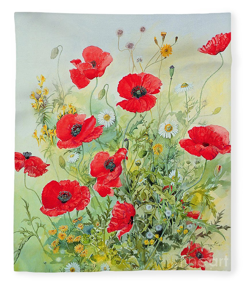 Flowers; Botanical; Flower; Poppies; Mayweed; Leaf; Leafs; Leafy; Flower; Red Flower; White Flower; Yellow Flower; Poppie; Mayweeds Fleece Blanket featuring the painting Poppies and Mayweed by John Gubbins