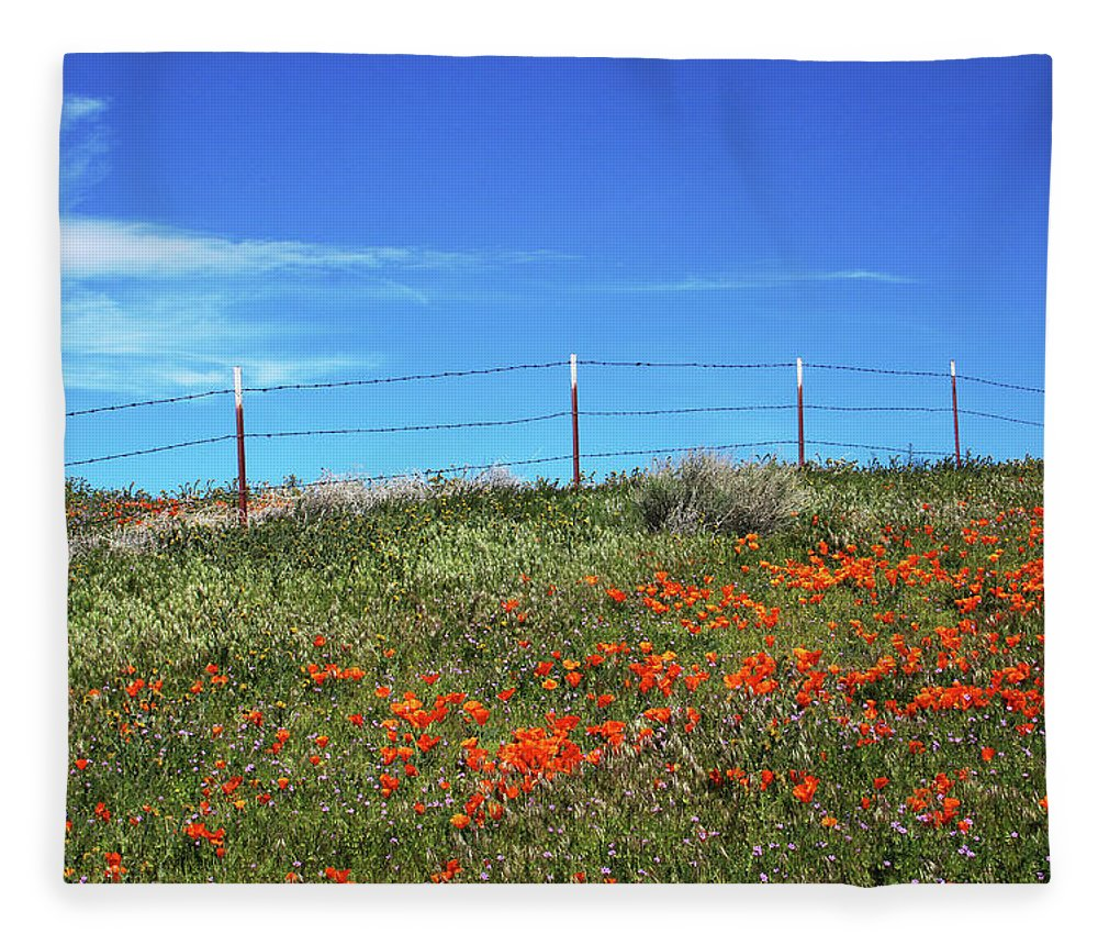 Poppies Fleece Blanket featuring the mixed media Poppy Hill- Art By Linda Woods by Linda Woods