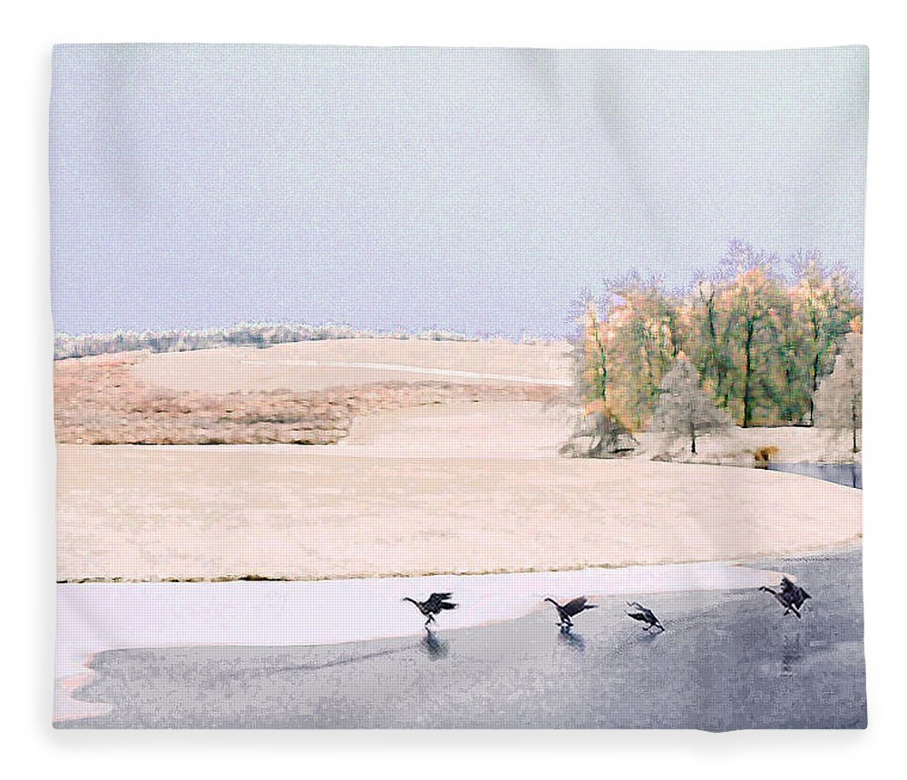 Landscape Fleece Blanket featuring the photograph Powell Gardens in Winter by Steve Karol