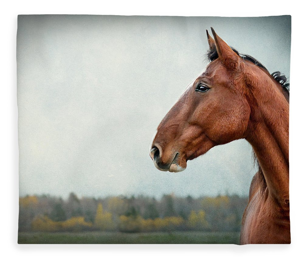 Horse Fleece Blanket featuring the photograph Proud by Maggie Terlecki