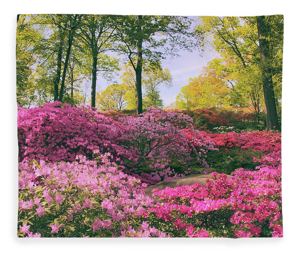Azalea Fleece Blanket featuring the photograph The Colors Of May by Jessica Jenney