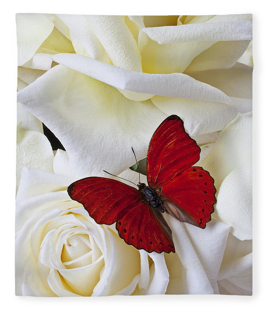 Red Fleece Blanket featuring the photograph Red Butterfly On White Roses by Garry Gay