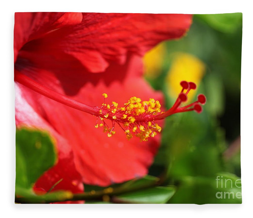 Flowers Fleece Blanket featuring the photograph Red Hibiscus and Green by Nadine Rippelmeyer