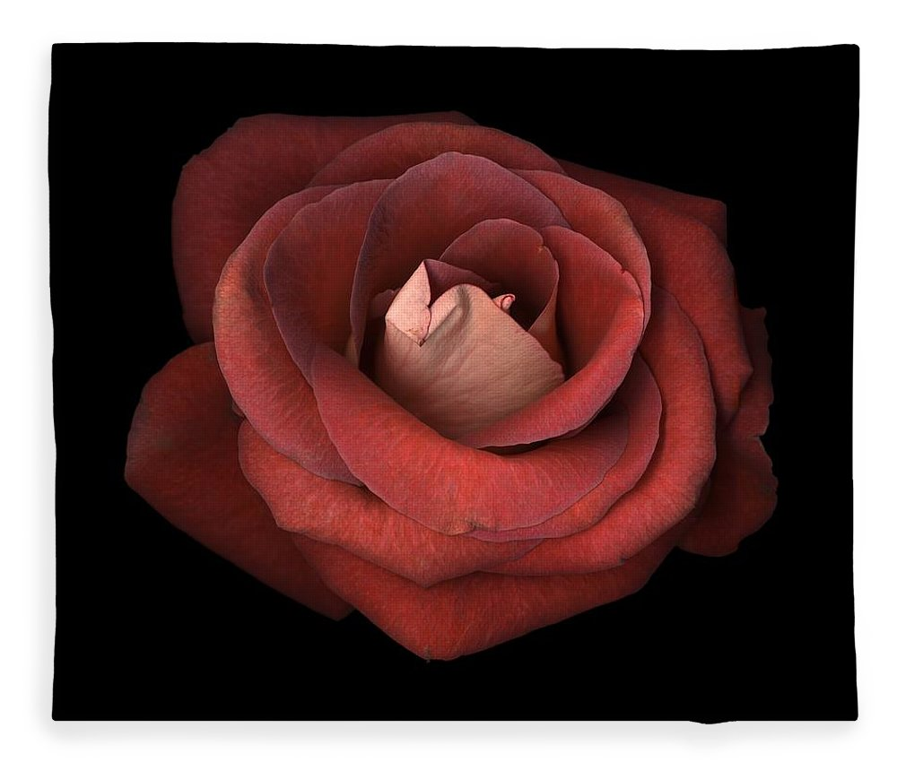 Red Rose Fleece Blanket featuring the photograph Red Rose by Test