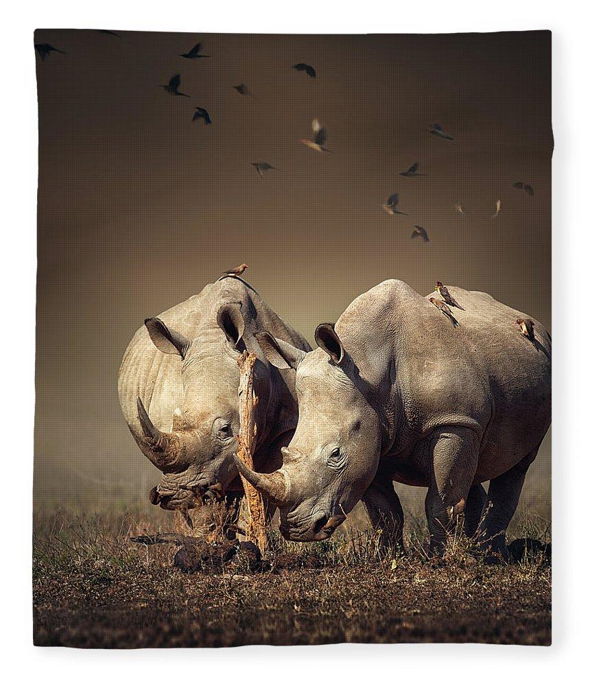 Rhinoceros Fleece Blanket featuring the photograph Rhino's With Birds by Johan Swanepoel
