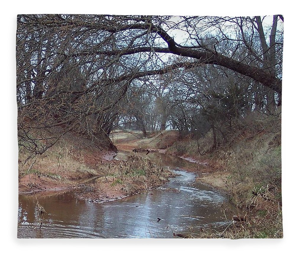 Landscapes Fleece Blanket featuring the photograph Rivers Bend by Shari Chavira