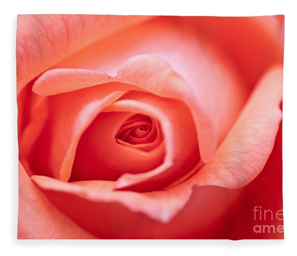 Abstract Fleece Blanket featuring the photograph Rose Petals by Michal Boubin