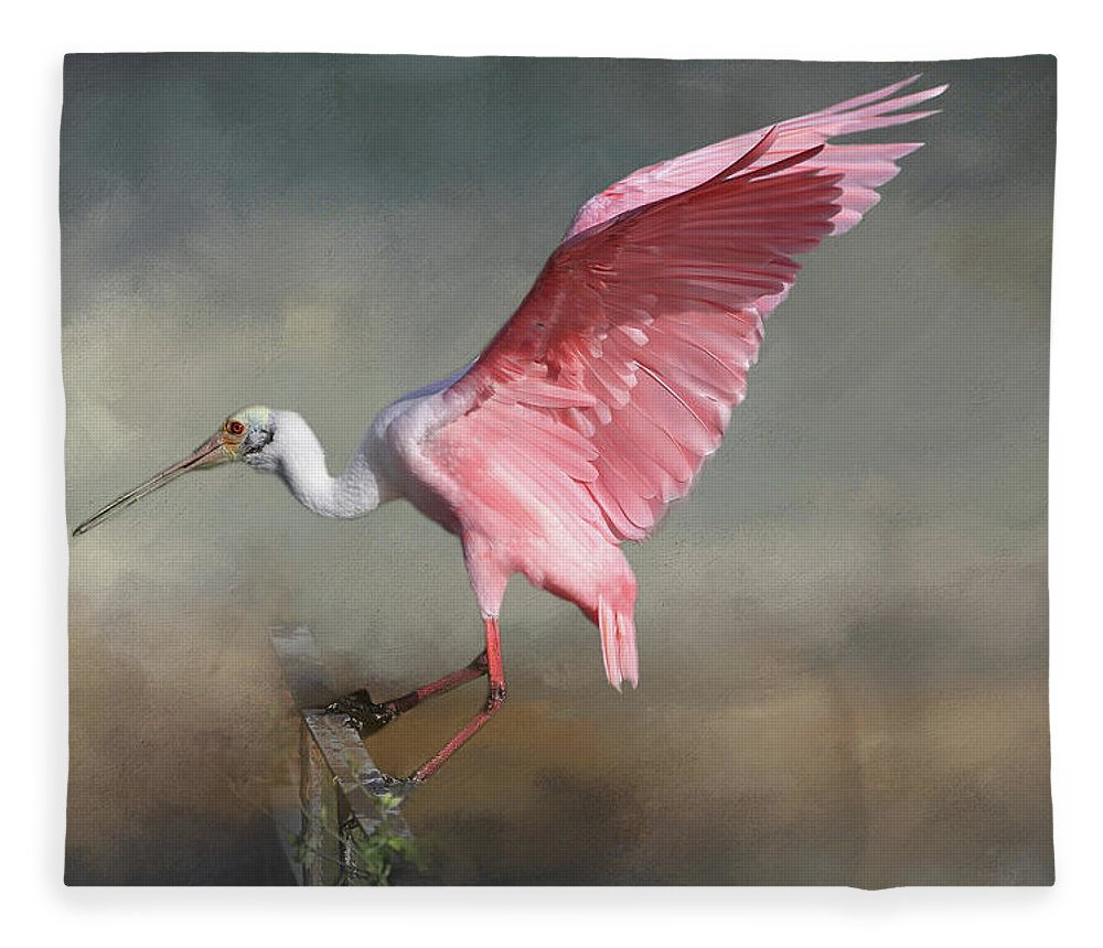 Roseate Spoonbill Fleece Blanket featuring the photograph Rosy by Donna Kennedy