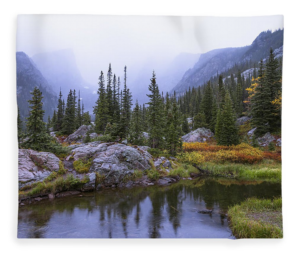 Saturated Forest Fleece Blanket featuring the photograph Saturated Forest by Chad Dutson