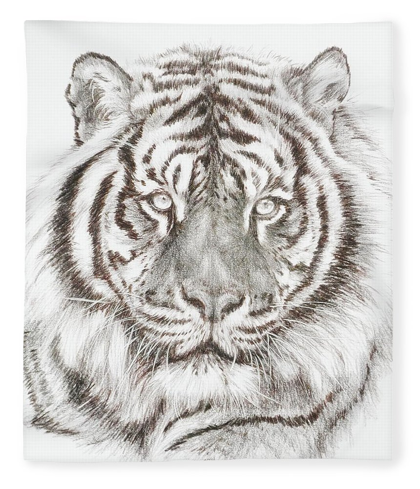Big Cat Fleece Blanket featuring the drawing Shimmer by Barbara Keith