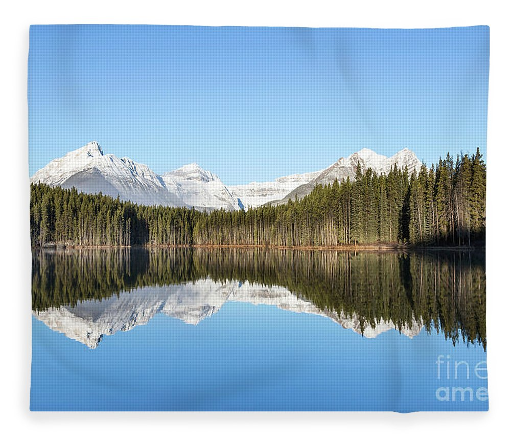 Kremsdorf Fleece Blanket featuring the photograph Silence Of North by Evelina Kremsdorf