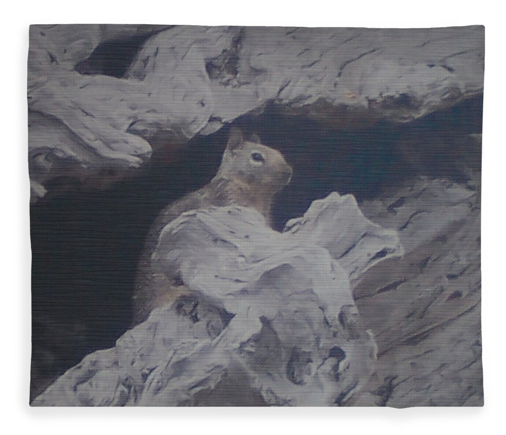 Squirrel Fleece Blanket featuring the photograph Silent Observer by Pharris Art