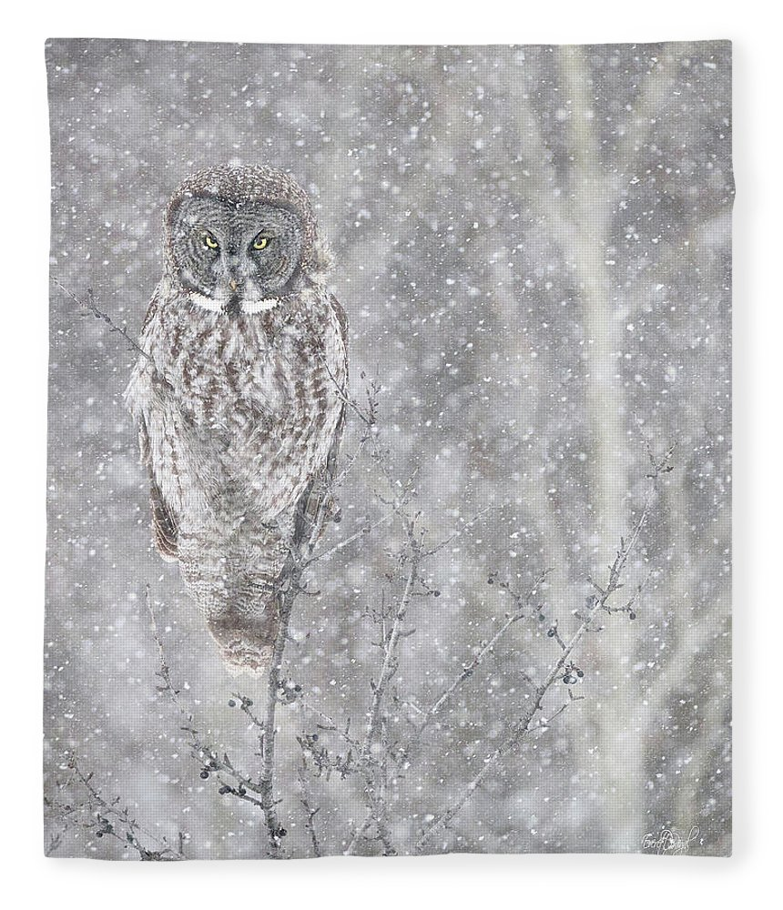 Owl Fleece Blanket featuring the photograph Silent Snowfall Portrait by Everet Regal