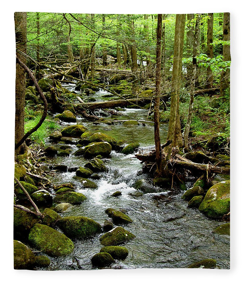River Fleece Blanket featuring the photograph Smoky Mountain Stream 2 by Nancy Mueller