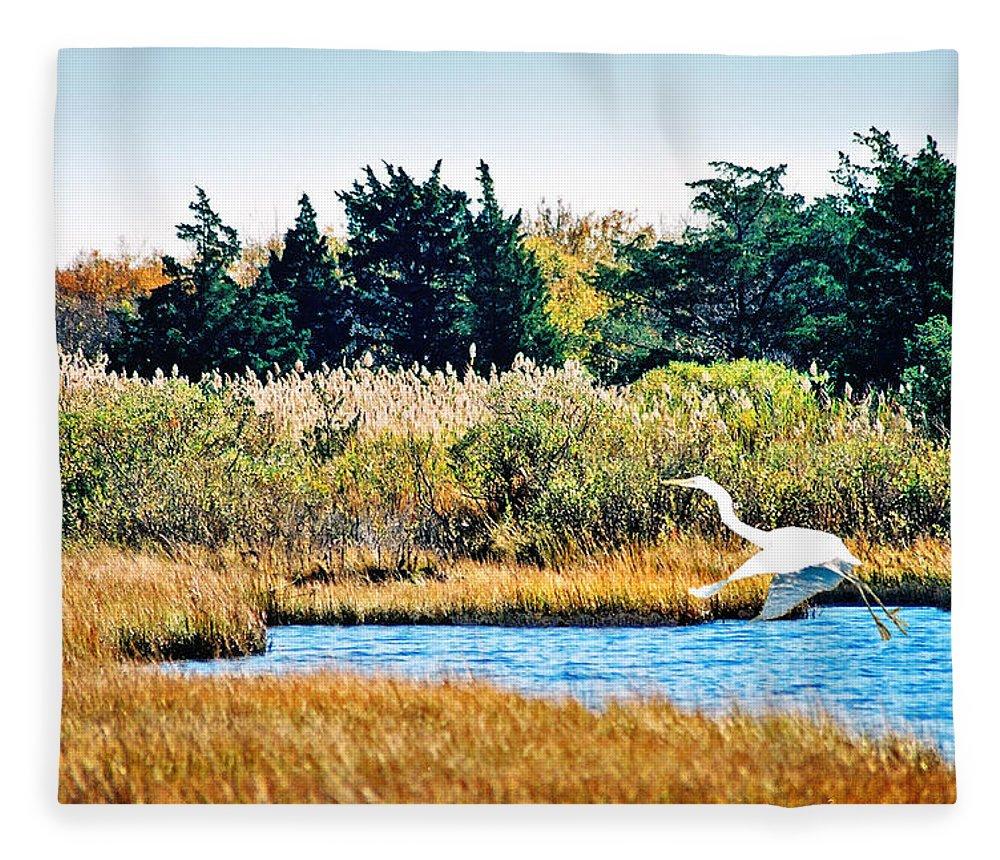 Landscape Fleece Blanket featuring the photograph Snowy Egret-Island Beach State Park N.J. by Steve Karol