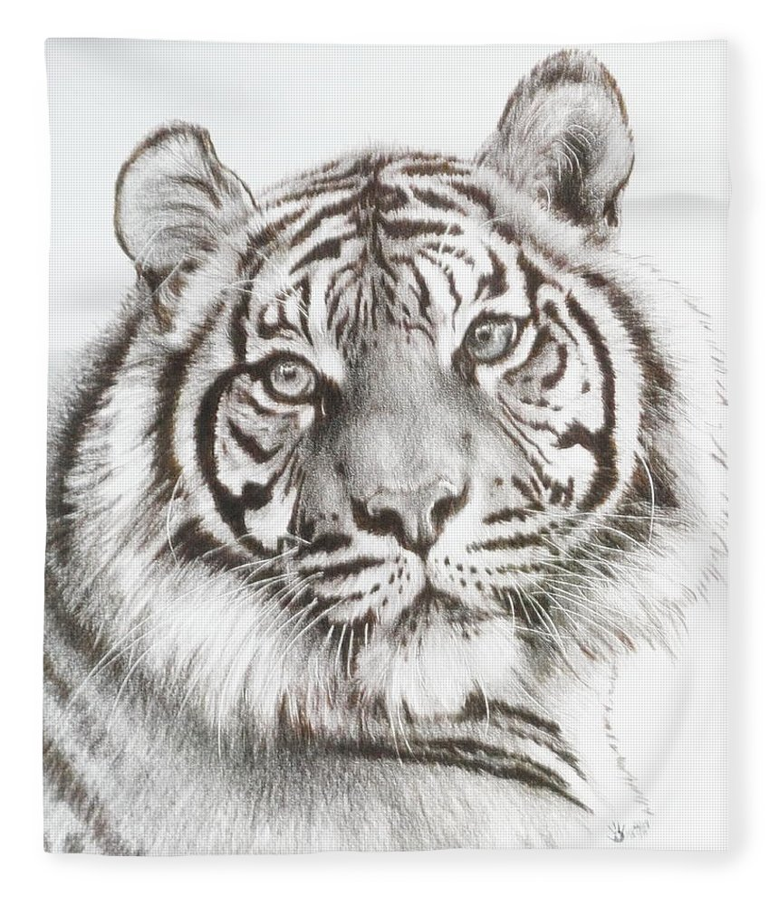 Big Cat Fleece Blanket featuring the drawing Sparkle by Barbara Keith