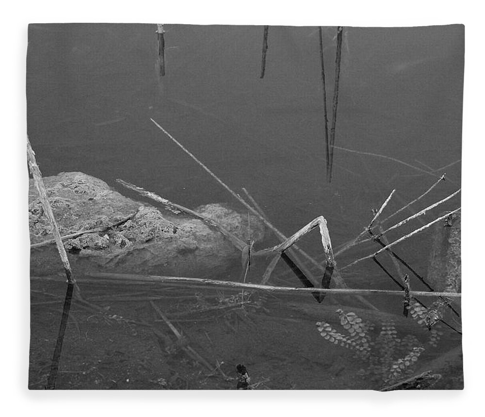 Black And White Fleece Blanket featuring the photograph Spider In Water by Rob Hans