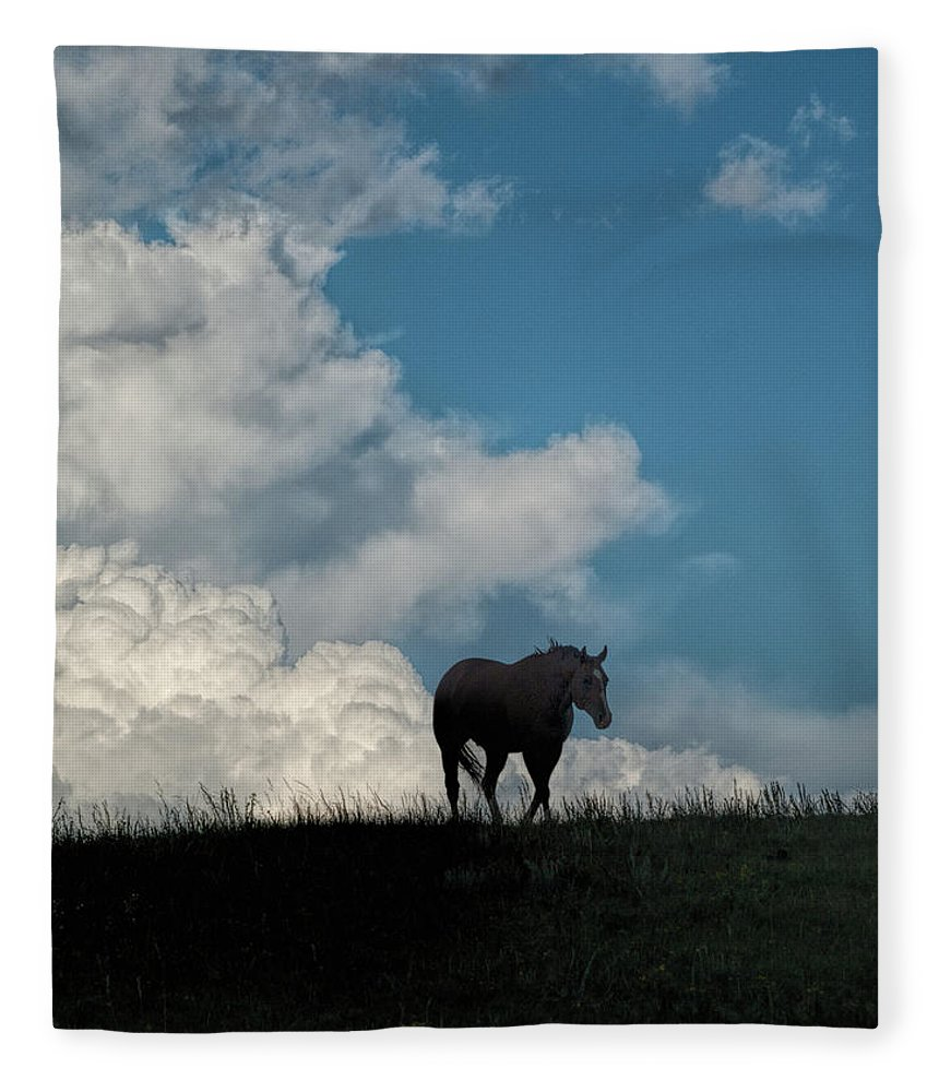Horse Fleece Blanket featuring the photograph Storm Bringer by Alana Thrower