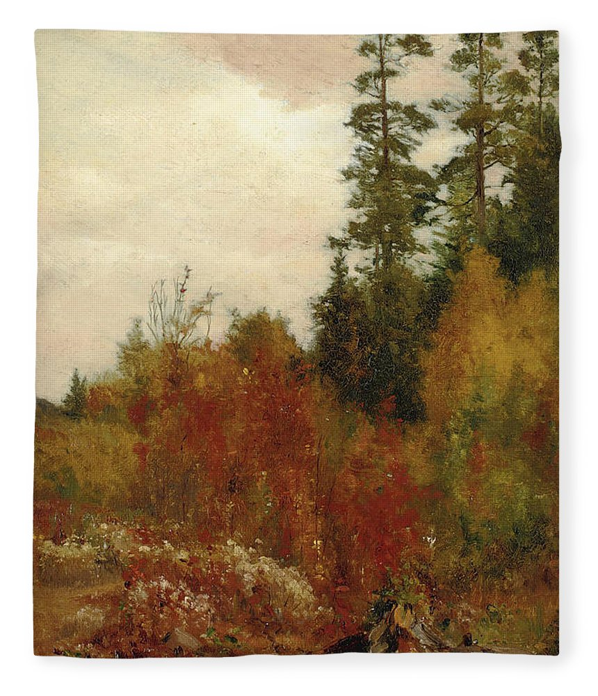 Jervis Mcentee Fleece Blanket featuring the painting Study Near Schulls by Jervis McEntee
