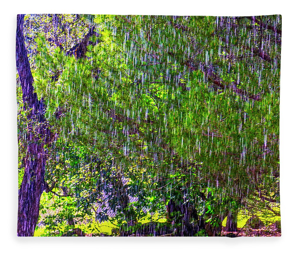Downpour Fleece Blanket featuring the photograph Sudden Downpour by Garry Gay