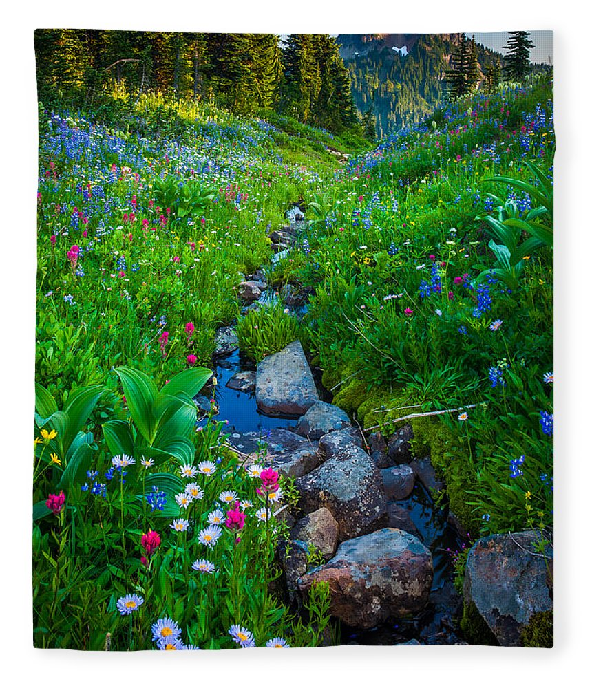 America Fleece Blanket featuring the photograph Summer Creek by Inge Johnsson
