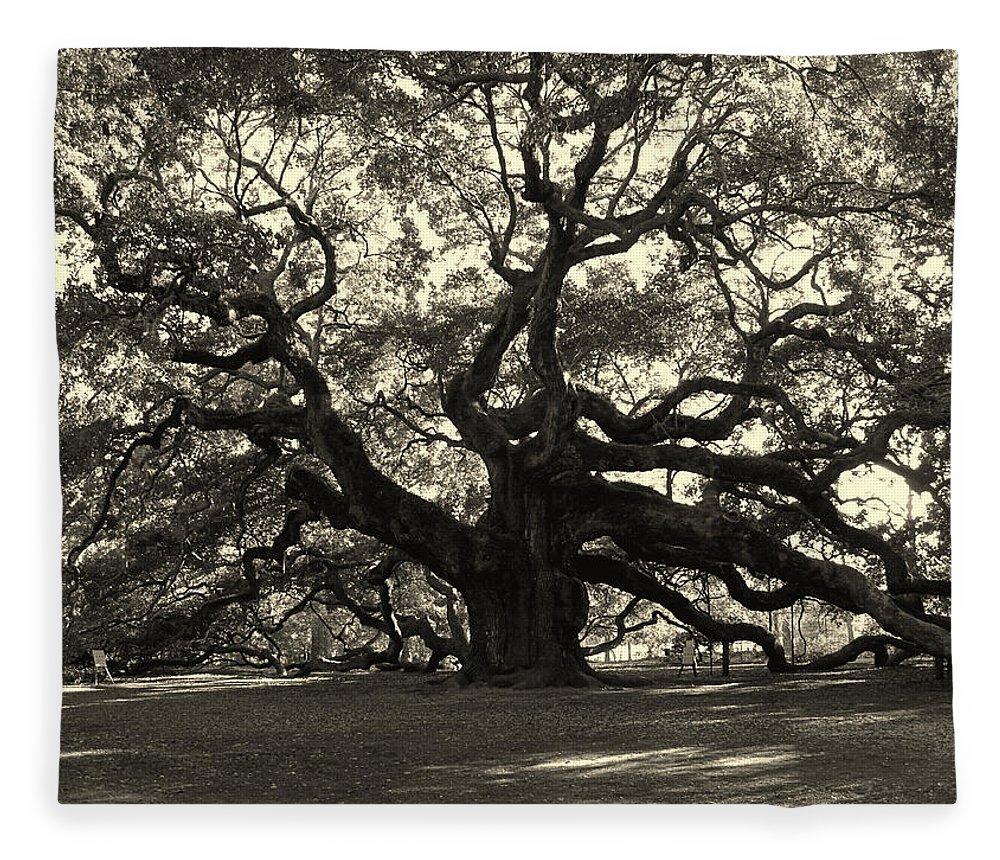 Angel Oak Fleece Blanket featuring the photograph The Angel Oak by Susanne Van Hulst