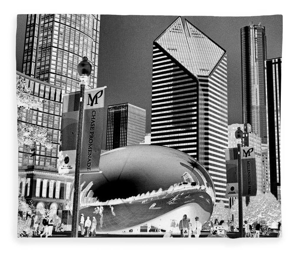 The Bean Fleece Blanket featuring the photograph The Bean - 2 by Ely Arsha