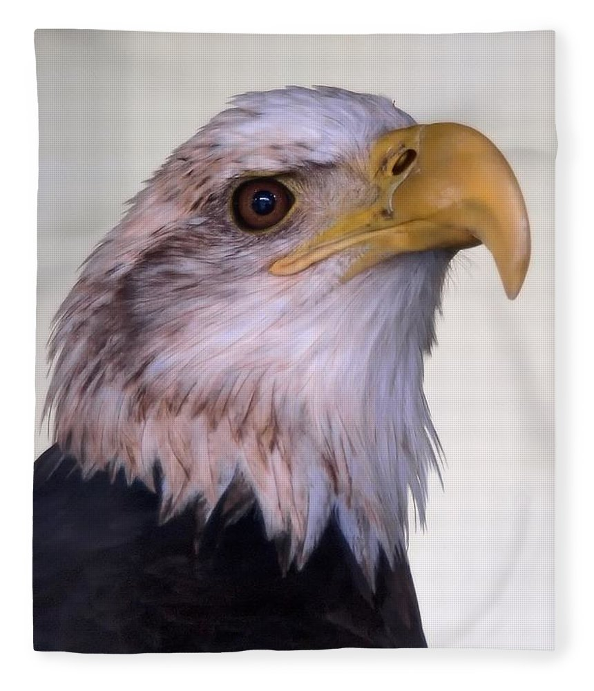 Ann Keisling Fleece Blanket featuring the photograph The Eagle by Ann Keisling