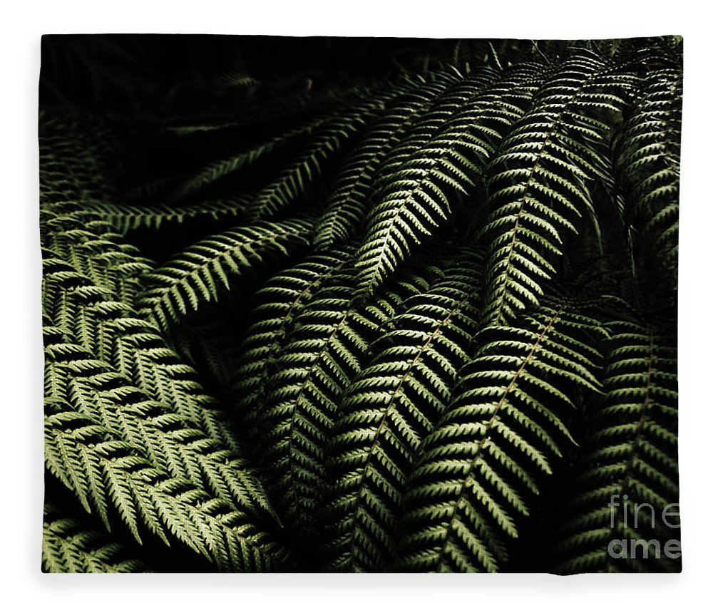 Rainforest Fleece Blanket featuring the photograph The Exotic Dark Jungle by Jorgo Photography - Wall Art Gallery