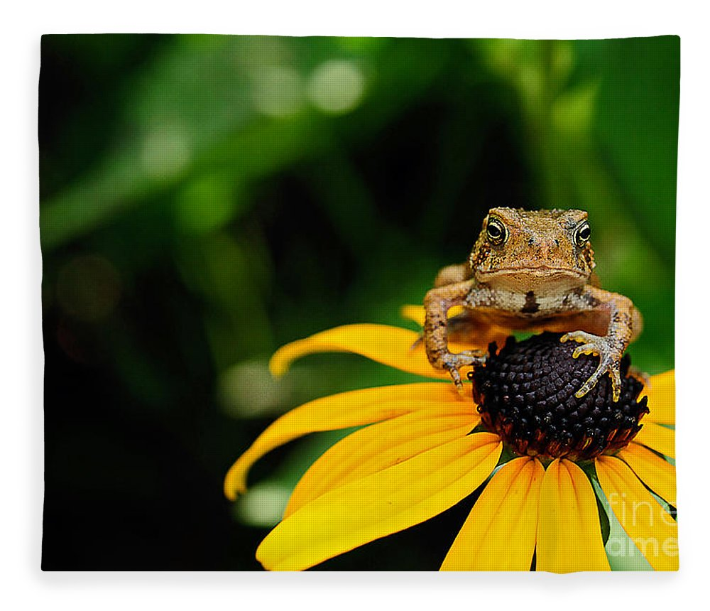Toad Fleece Blanket featuring the photograph The Harbinger by Lois Bryan
