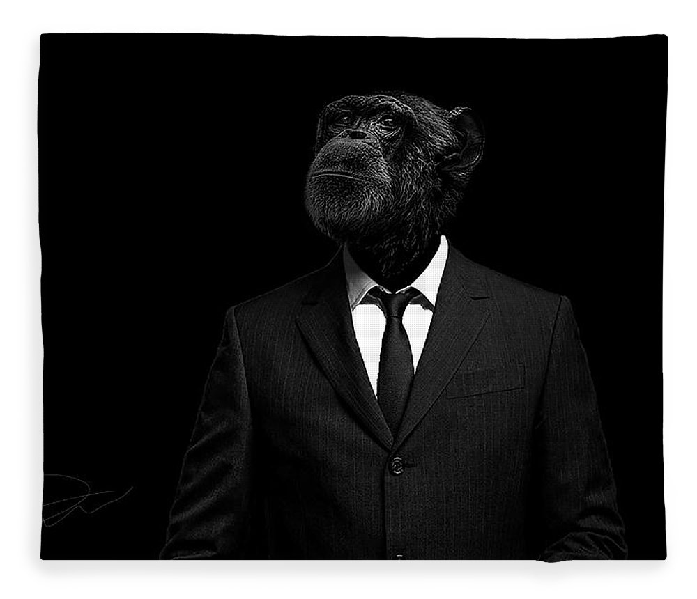 Chimpanzee Fleece Blanket featuring the photograph The interview by Paul Neville