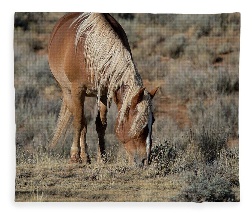 Cody Fleece Blanket featuring the photograph The Joy of Nature by Frank Madia