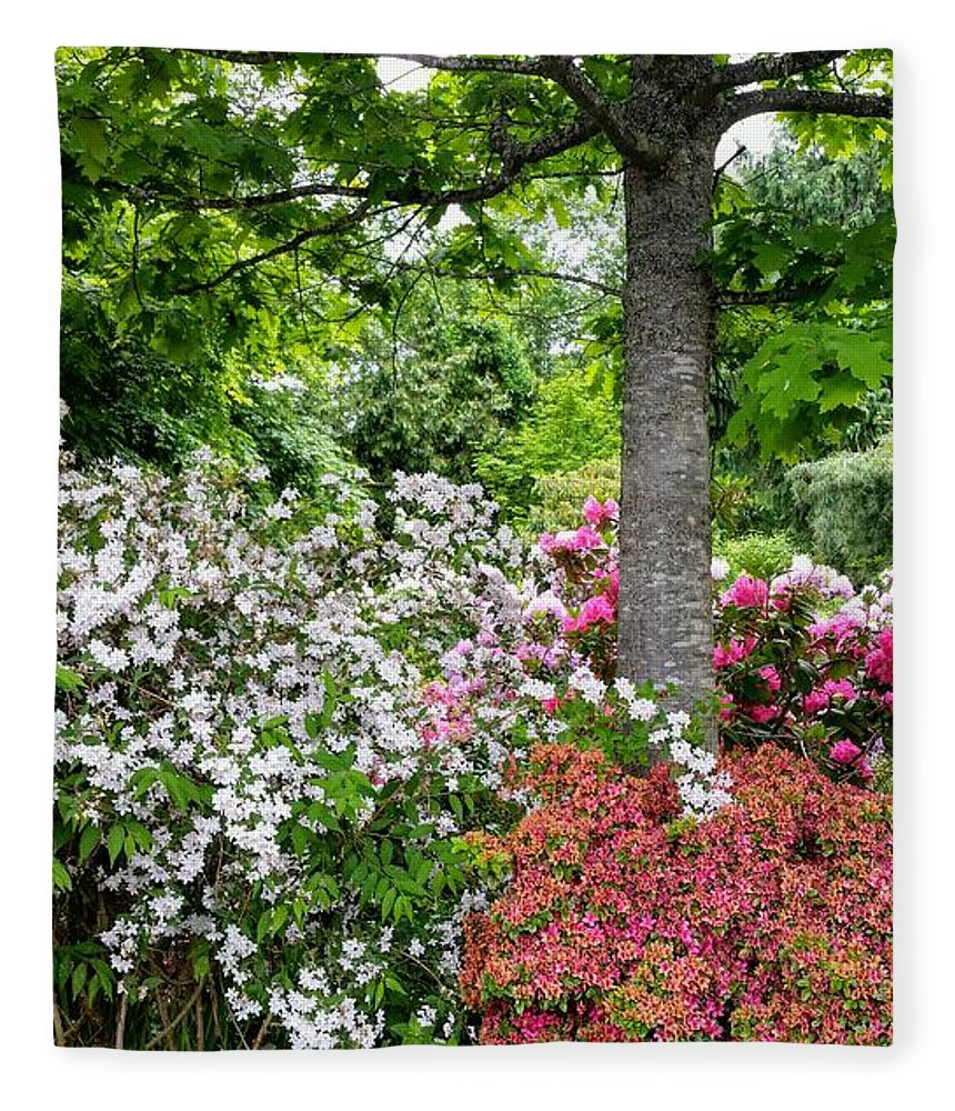 Botanical Flower's Nature Fleece Blanket featuring the photograph The peaceful place 8 by Valerie Josi
