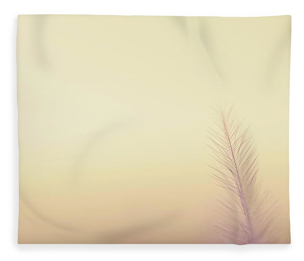 Delicate Fleece Blanket featuring the photograph The Questions Worth Asking by Scott Norris