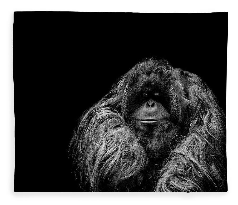 Orangutan Fleece Blanket featuring the photograph The Vigilante by Paul Neville