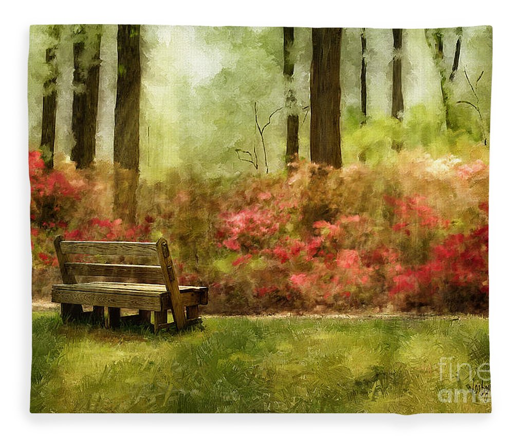 Bench Fleece Blanket featuring the digital art The You You Used To Be by Lois Bryan