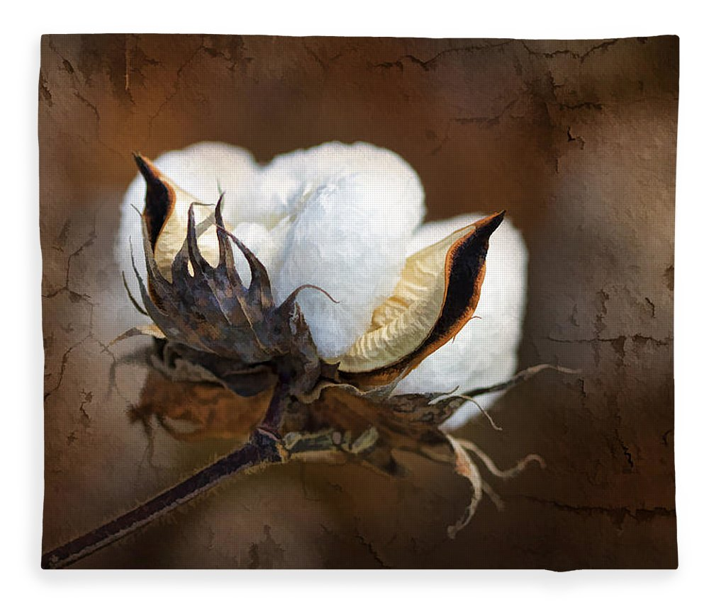 Cotton Fleece Blanket featuring the photograph Them Cotton Bolls by Kathy Clark