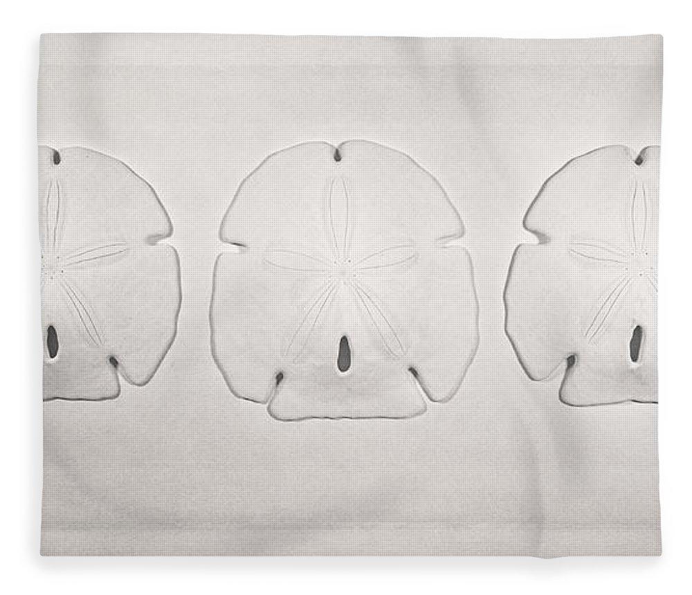 Scott Norris Photography Fleece Blanket featuring the photograph Three Sand Dollars by Scott Norris