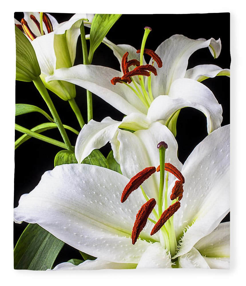 White Tiger Lily Fleece Blanket featuring the photograph Three White Lilies by Garry Gay