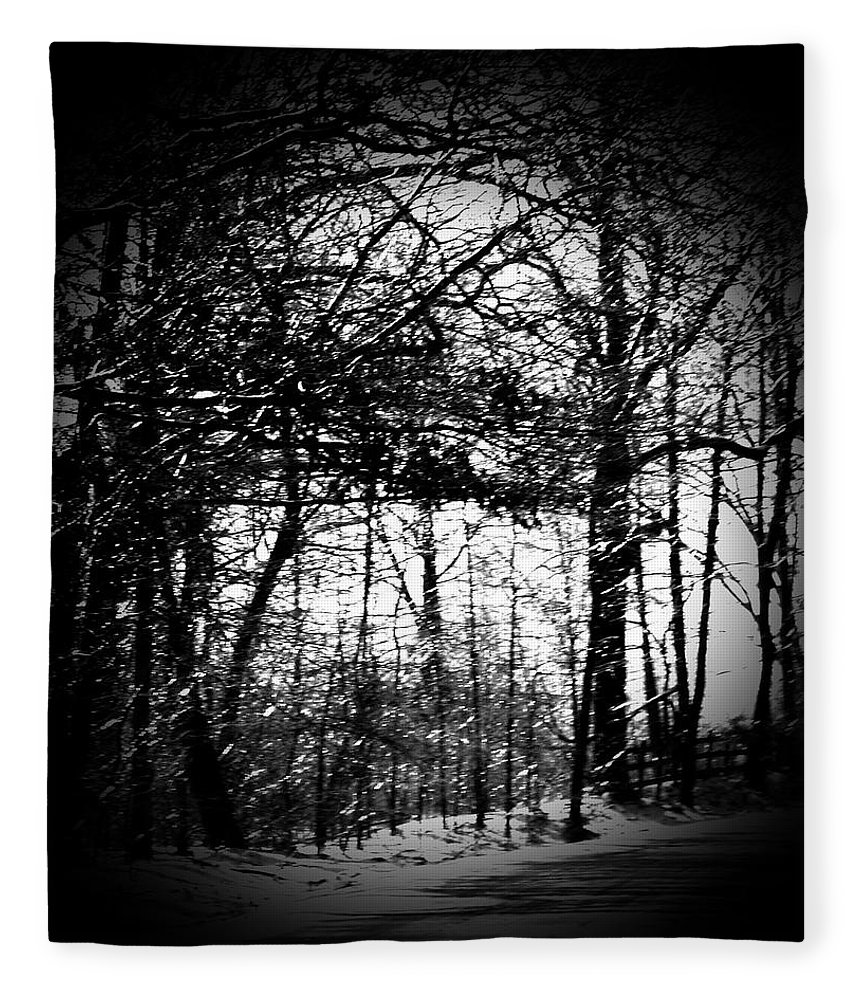 Trees Fleece Blanket featuring the photograph Through The Lens- Black And White by Charleen Treasures