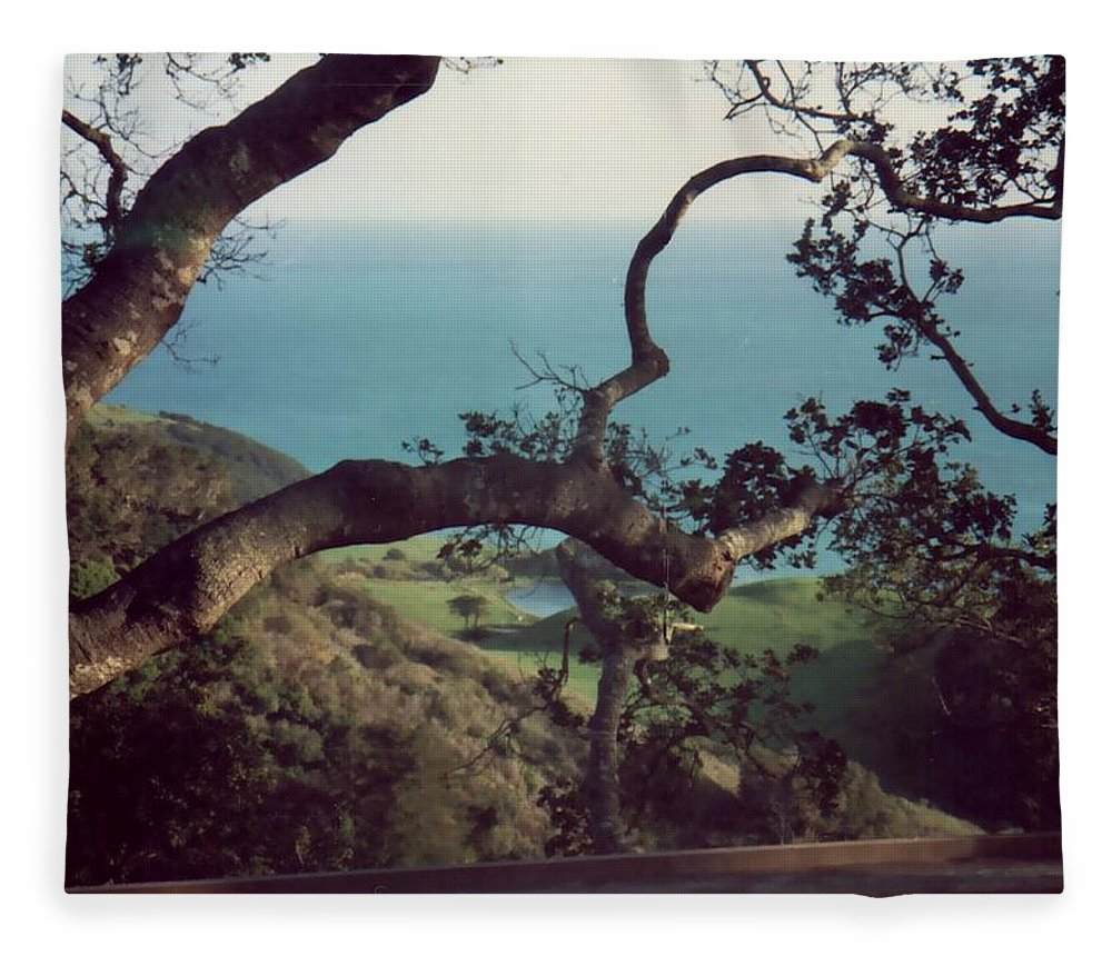 Trees Fleece Blanket featuring the photograph Through The Trees by Charleen Treasures