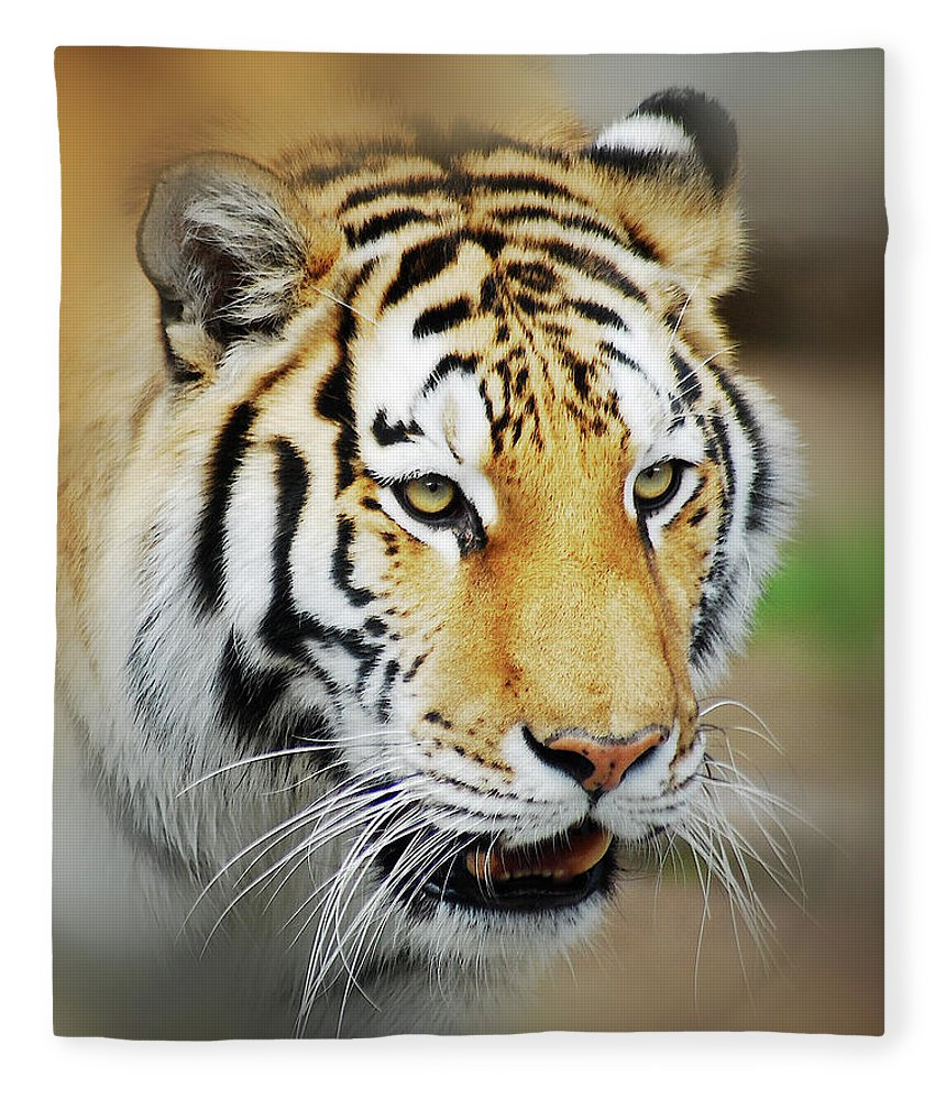 Yellow Fleece Blanket featuring the photograph Tiger Eyes by Michael Peychich