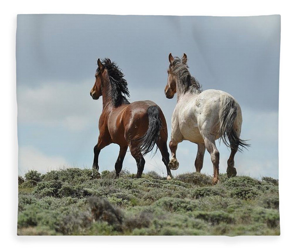 Wild Horses Fleece Blanket featuring the photograph Too Beautiful by Frank Madia