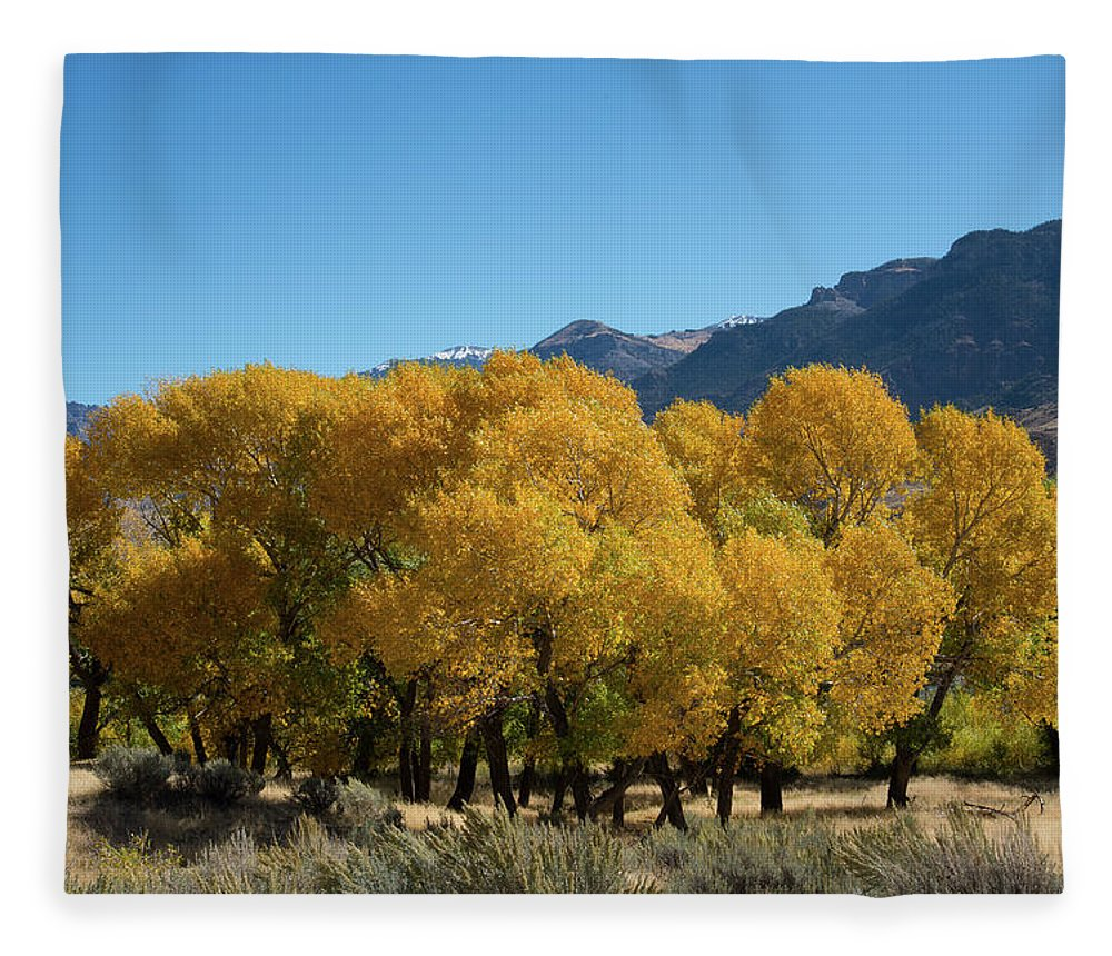 Cody Fleece Blanket featuring the photograph Tranquility in Golds and Yellows by Frank Madia