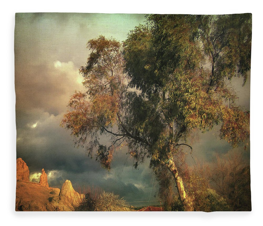 Tree Fleece Blanket featuring the photograph Tree Of Confusion by Zapista Zapista