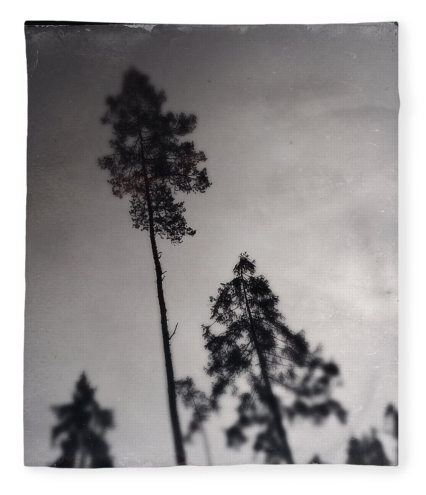 Tree Fleece Blanket featuring the photograph Trees black and white wetplate by Matthias Hauser
