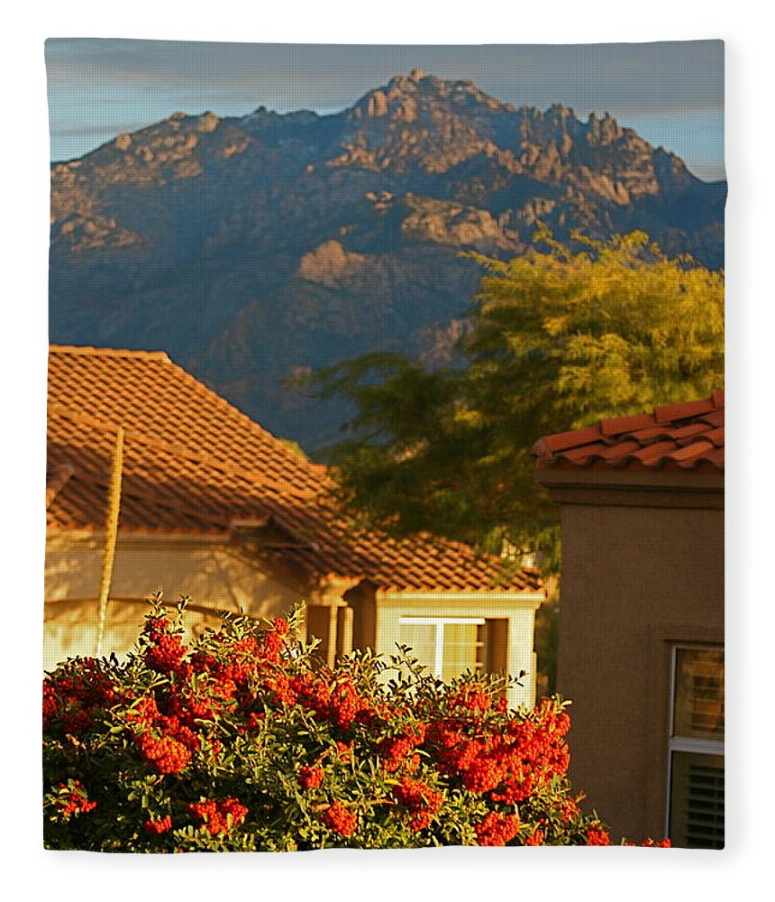 Mountains Fleece Blanket featuring the photograph Tucson Beauty by Nadine Rippelmeyer