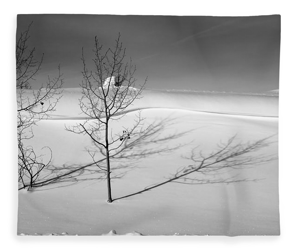 Nature Fleece Blanket featuring the photograph Twins by Skip Hunt